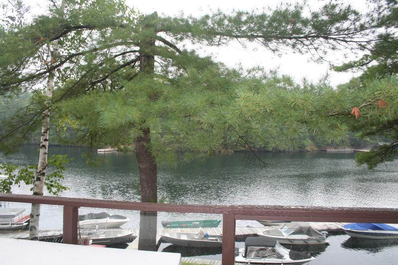 The Severn View - View From Deck - The Severn View - Muskoka - Tea Lake Cottages - Coldwater - rentals