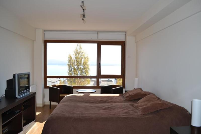 Apartment with Lake view in the city center (TL1U) - Image 1 - San Carlos de Bariloche - rentals