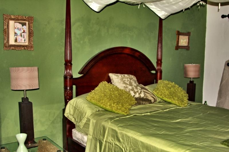 bedroom - BNB La Pantera Negra Green Room - Merida - rentals