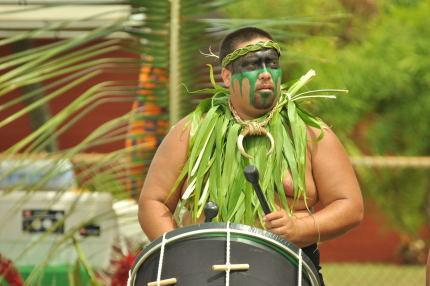 Tahitian festival drummer - Oceanfront, renovated, great view, Hawaiian theme decor, lovely property - Kapaa - rentals