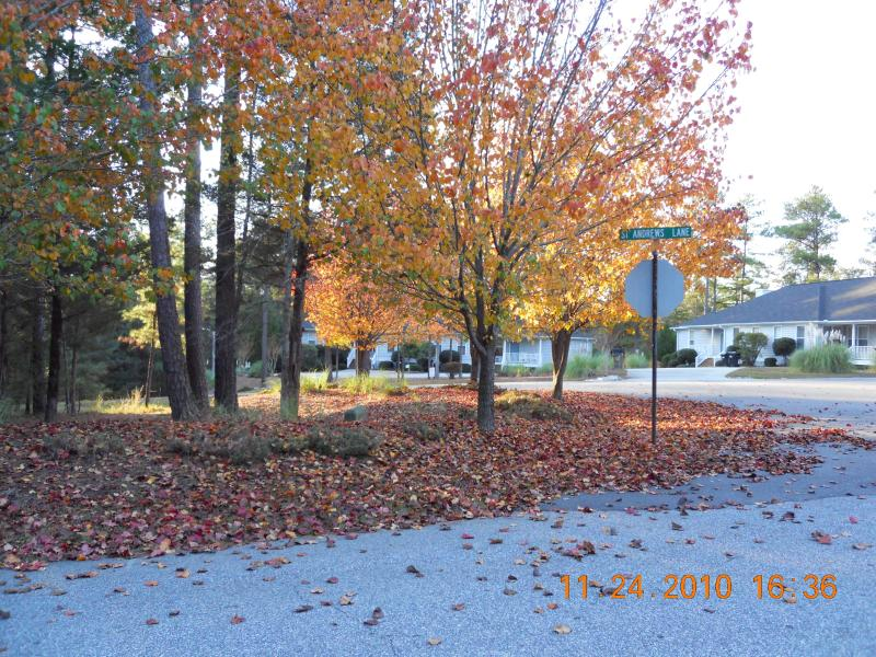 Autumn arrival. - Championship golf, boating, fishing and relaxing!! - McCormick - rentals
