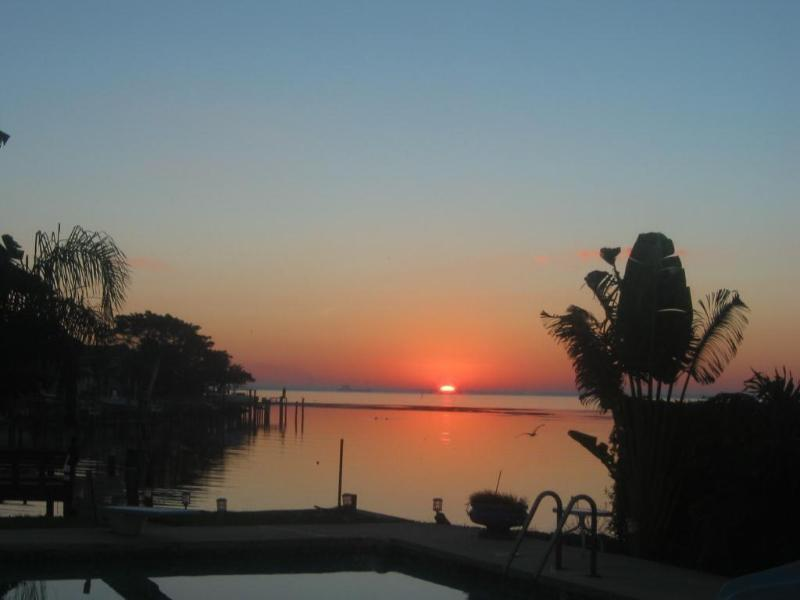 Good morning Sunshine - Paradise Living in Florida - complete privacy - Saint Petersburg - rentals