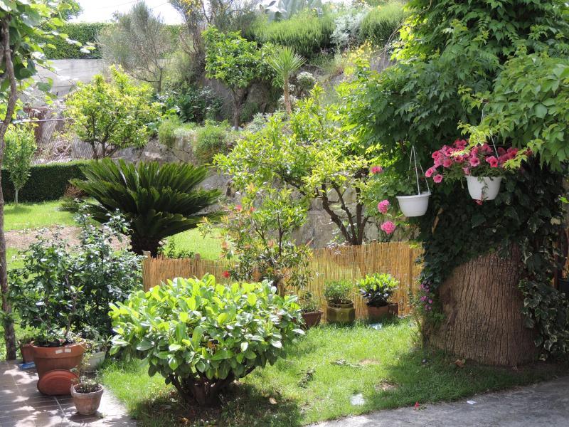 Apartment  with beautifull garden - Image 1 - Split - rentals