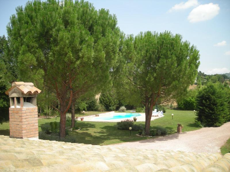 Summer view across to the pool. - Poggetto Country Apartments, Todi (sleeps 4, pool) - Todi - rentals