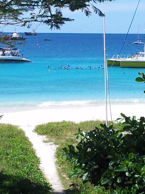 Our Beachfront with snorkelers - The One and Only on the Beach Brick House - Bridgetown - rentals