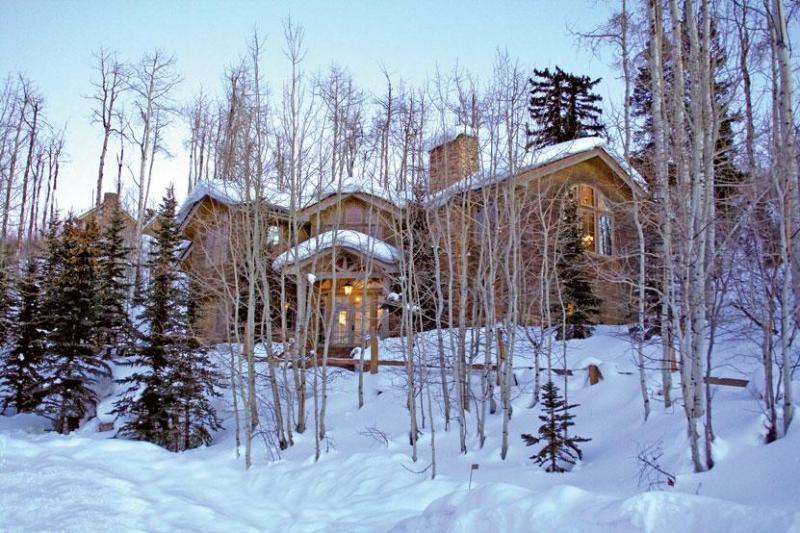 Luxurious Home On Mountain - Luxurious Mountain Ski House - Snowmass Village - rentals