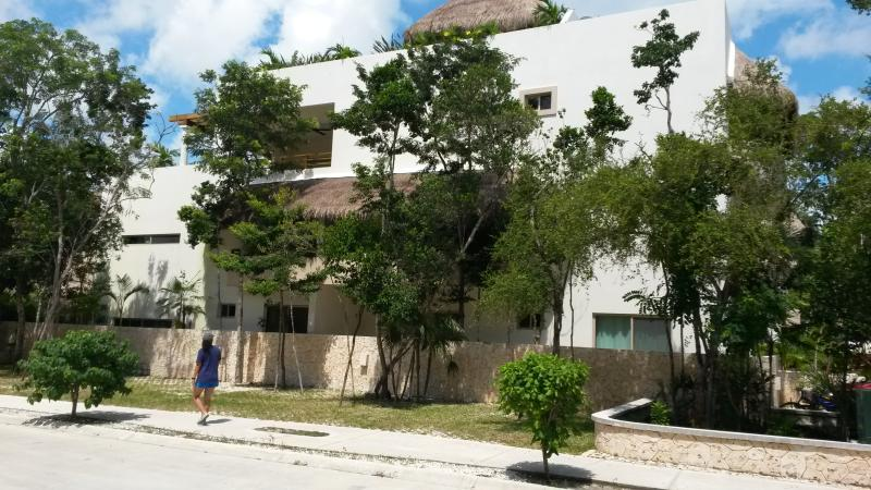 few neighbors - Zama Village 211, Tulum - Tulum - rentals