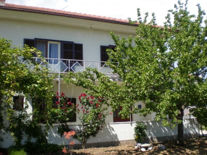 Holiday House Anela-Trogir - Image 1 - Seget Donji-Vranjic - rentals