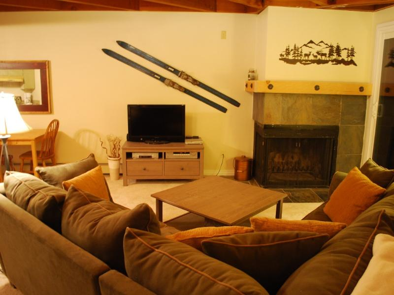 A cozy living room includes wood burning fireplace, pull out sleeper and LCD TV - Wildernest Condo - Summit County Colorado - Silverthorne - rentals