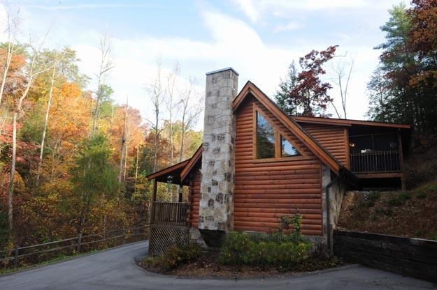 ER227 - BEARRY NICE - Image 1 - Pigeon Forge - rentals