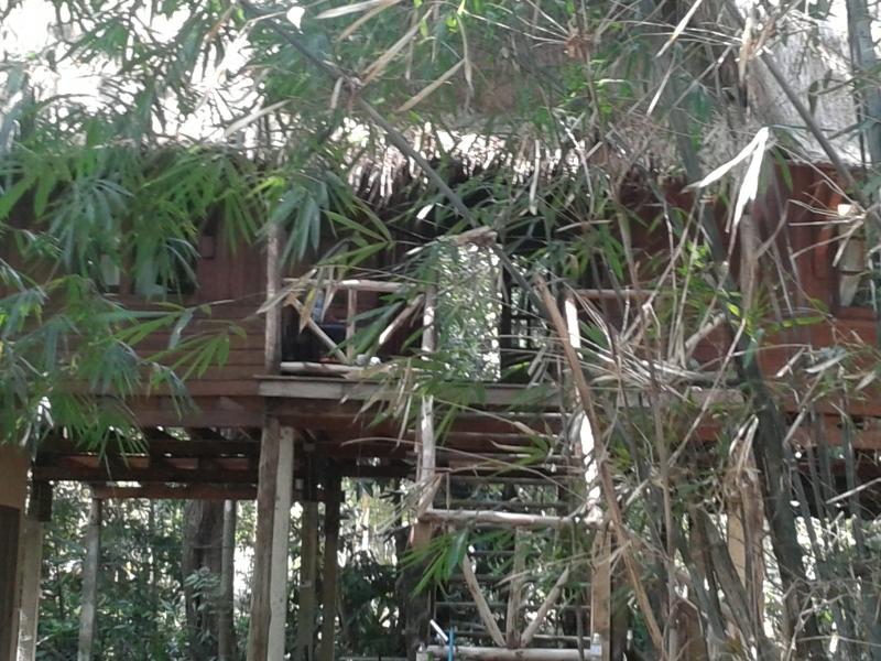 in the jungle - Paradise on the river front - Koh Chang - rentals