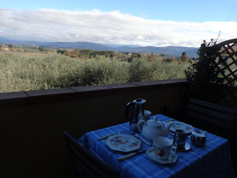 Part of the view from the Balcony - Tuscany  Great Chianti Location -WIFI- - Montefiridolfi - rentals