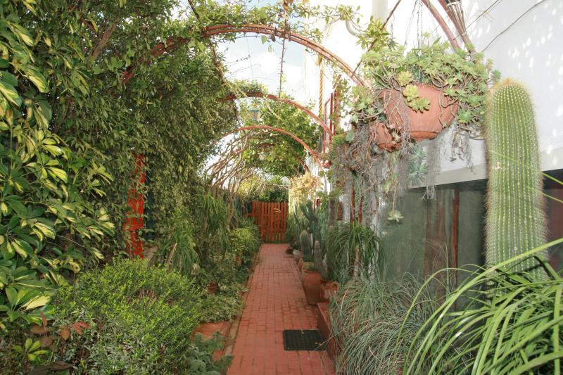 Giardino esotico di Villavinca - Villa tra Paestum Pompei Amalfi - Salerno - rentals