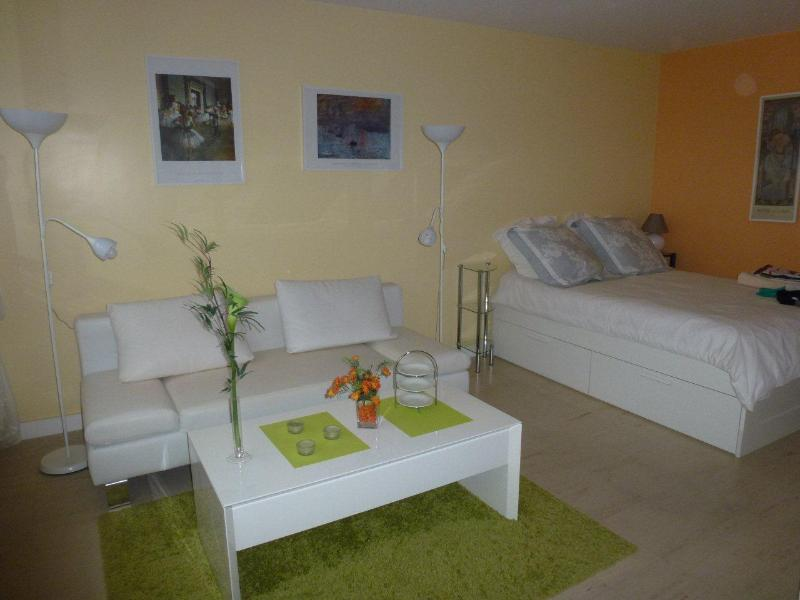 Living - Great Bright Apartment Fully Equipped Wifi - Paris - rentals