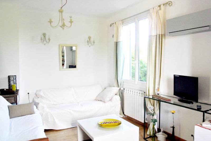 SALON - LUMIÈRE DE PROVENCE : HOUSE With Swimming Pool Garden Air Conditioned Internet Best Place to stay in Alpilles Provence - Molleges - rentals