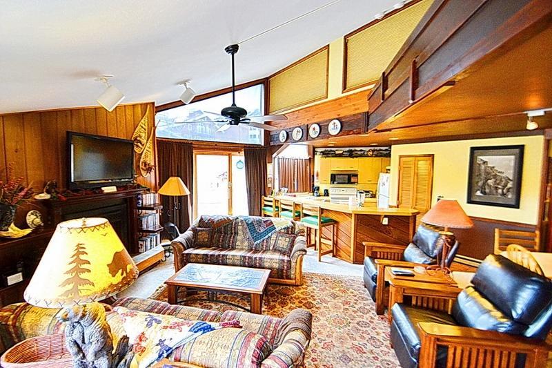 2bd Slps 6! Garage! Pets! - Image 1 - Crested Butte - rentals