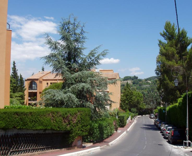 Look at Balcony 2d floor on the left - Apartment Paradisier In Mougins French Riviera*** - Mougins - rentals