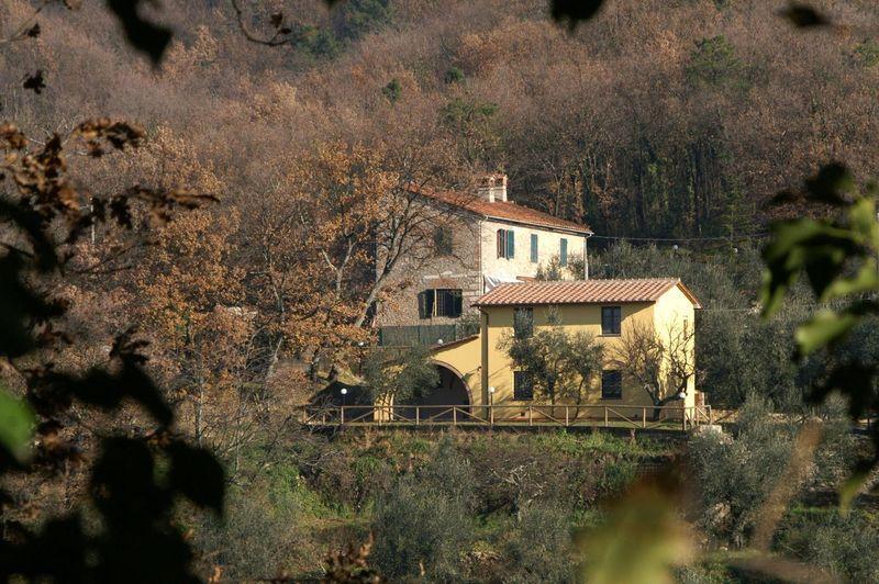 Monsummano Terme - 26086001 - Image 1 - Monsummano Terme - rentals