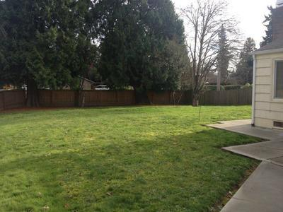 Lovely Private Home in Bellevue - Image 1 - Bellevue - rentals