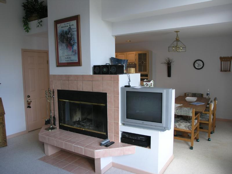Fireplace in Living Room - Pocono Getaway - Lake Harmony - rentals