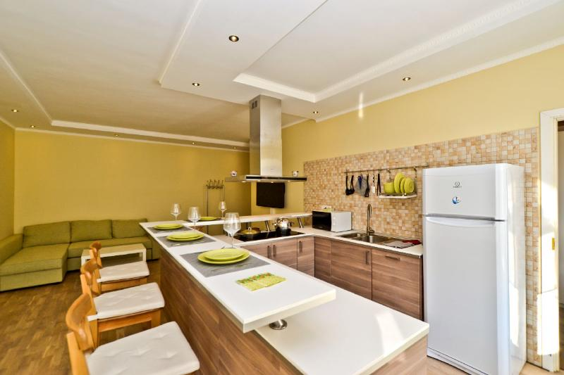 The Kitchen - Marata 19 (La Casa di Bury) - Saint Petersburg - rentals