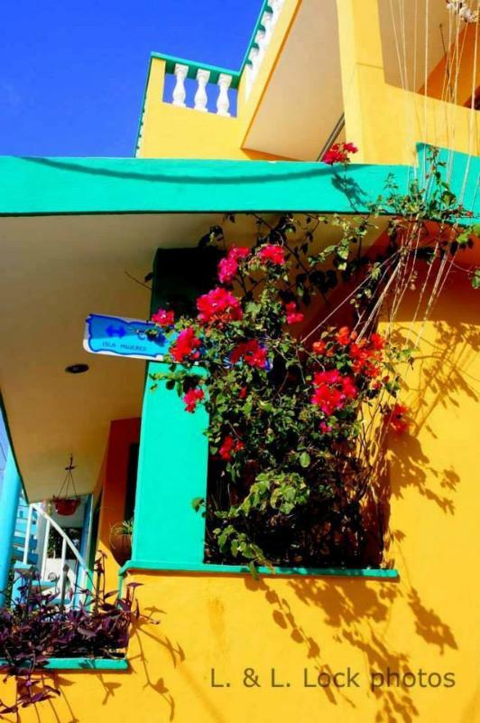 Casa Zuzy - Casa Zuzy La Tierra (Ground floor Apartment) - Isla Mujeres - rentals