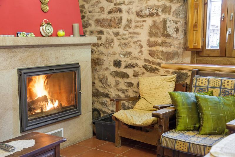 Casa Miravalle (rustic house in a little village - Image 1 - Gusendos de los Oteros - rentals