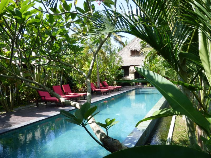 Our wonderful infinity pool overlooking the rice fields - Bali Harmony Luxury Million$Ricefield Views! - Ubud - rentals