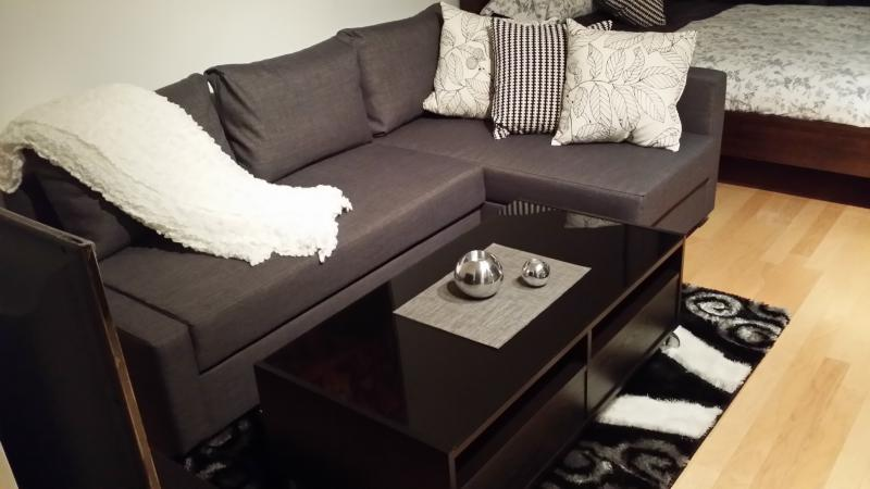 Comfortable and Cozy Ambience - Luxury Studio For Rent in Downtown Toronto - Toronto - rentals
