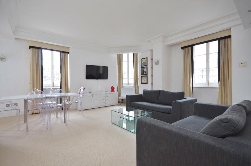 uberlondonapartments - lounge space - Strikingly beautiful penthouse on Trafalgar Square - London - rentals