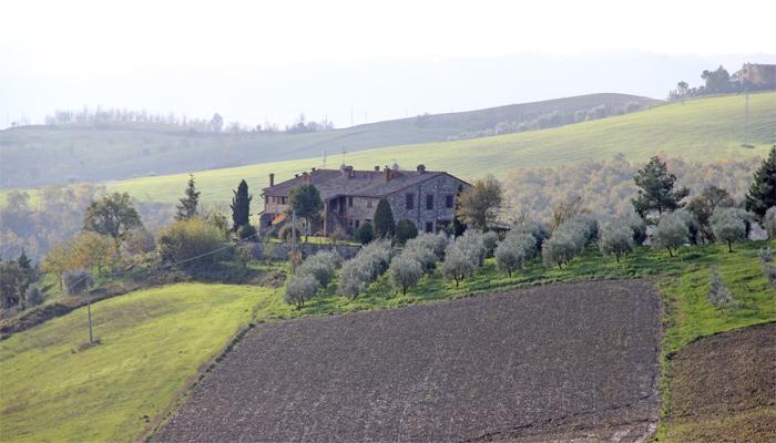 Agriturismo Bardanella - Agriturismo Bardanella - Allerona - rentals