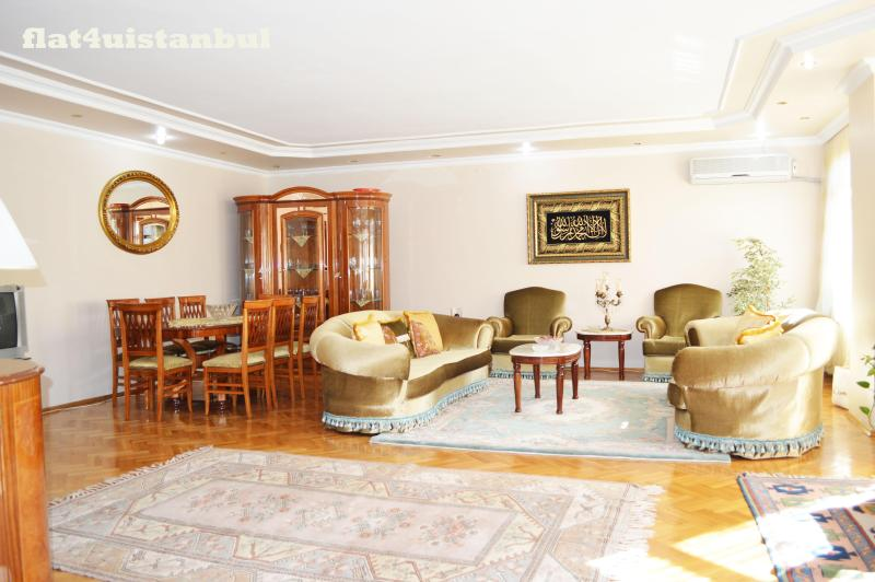 A GREAT FLAT FOR BIG FAMILIES  AND GROUPS - Image 1 - Istanbul - rentals