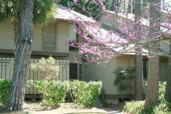 South Beach Villa 1402 - Image 1 - Hilton Head - rentals