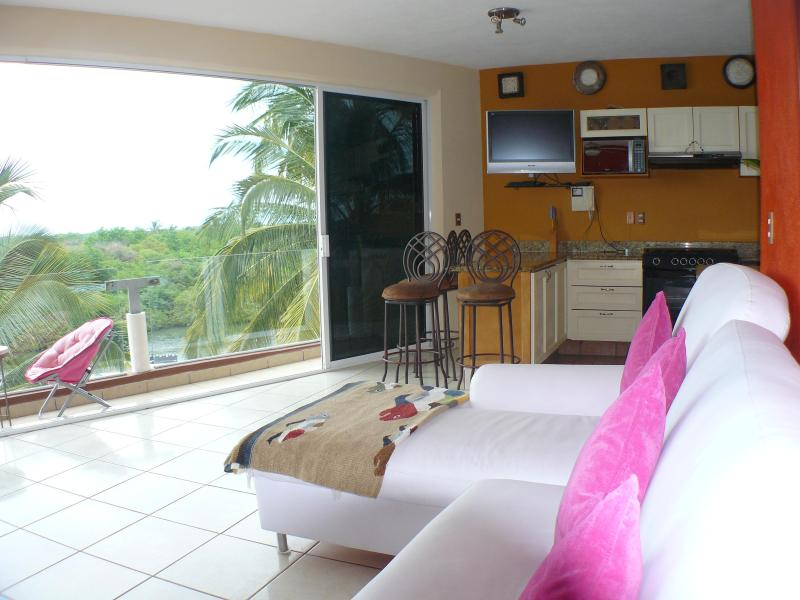 Penthouse dolphin dream - Penthouse Dream Mayan/Paradise Village,Nuevo Valla - Nuevo Vallarta - rentals
