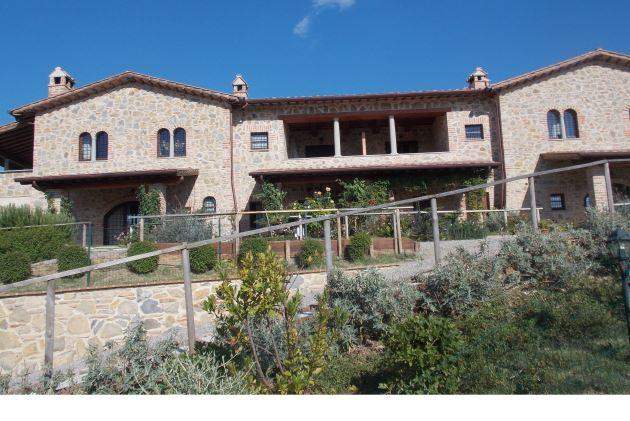 dony - Image 1 - Castiglione Del Lago - rentals