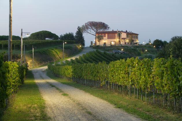 Burraia - Image 1 - Montopoli in Val d'Arno - rentals