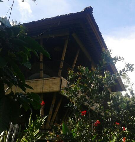 All local bamboo construction - Bamboo Eco Villa by Mountain Rainforest - Tabanan - rentals