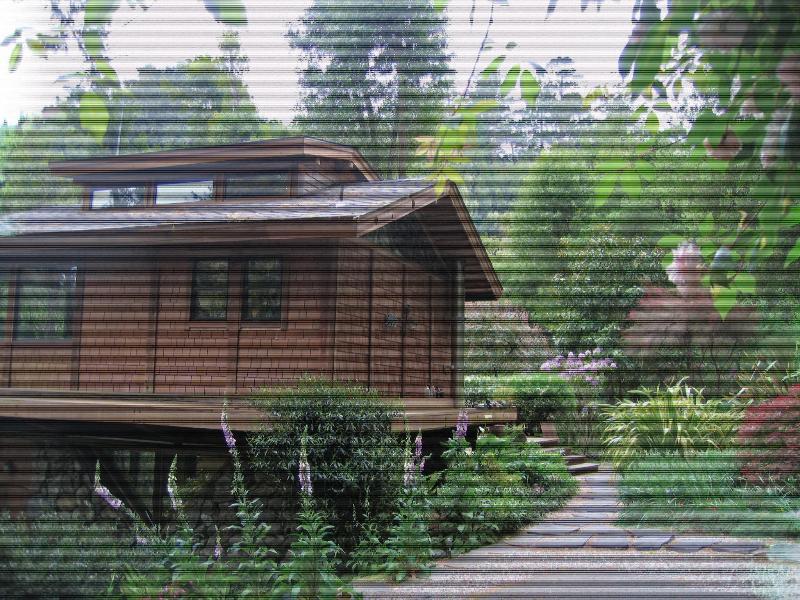 Unique Creekside Home - Image 1 - Point Reyes Station - rentals