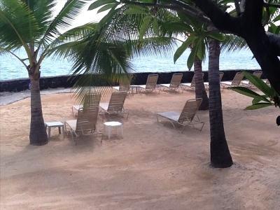 Ocean Front Beach for sun tanning - Tropical 1BR Remodeled Casa De Emdeko - Kona - Kailua-Kona - rentals