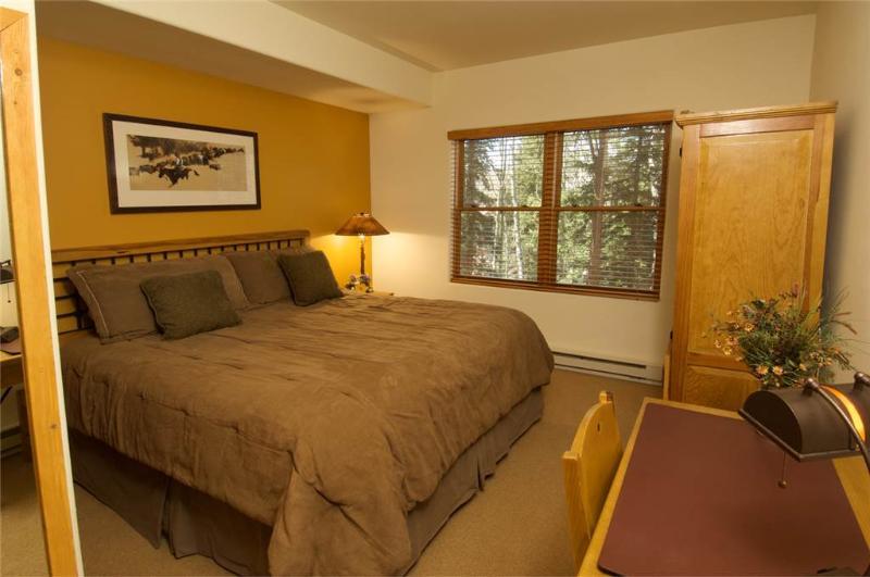 Bear Creek Lodge 205B - Image 1 - Mountain Village - rentals