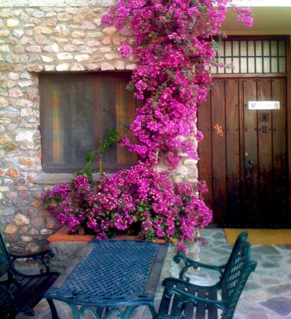 Entrance to Casa Buganvilla & Front Terrace Space - Casa Buganvilla *See note about pool* - Orgiva - rentals