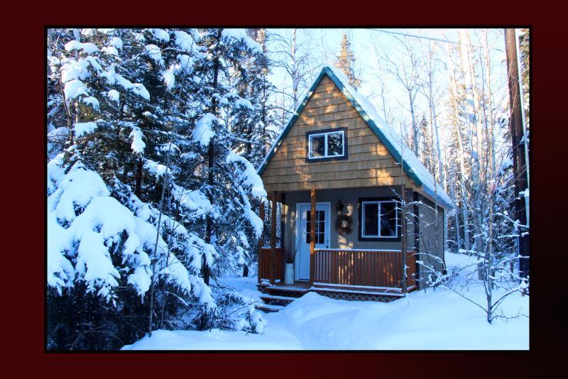 Alaska Wildlife Cabins and Hostel - Get the true feeling of Alaska - Enjoy Wildlife and the gorgeous Northern Lights - Image 1 - Fairbanks - rentals