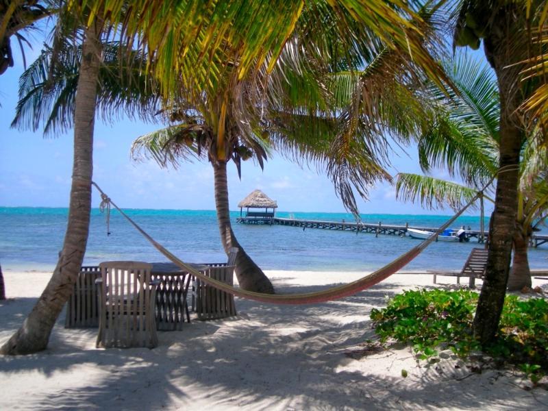 Imagine yourself in this hammock! - Adorable 1 bedroom condo on private beach! -A2 - San Pedro - rentals