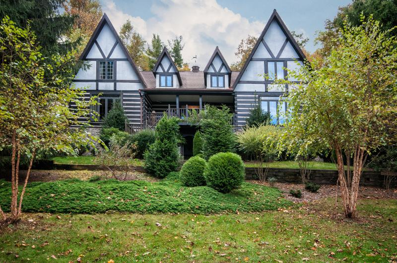 Luxurious Deer Lodge near Brevard and Asheville - Image 1 - Cedar Mountain - rentals