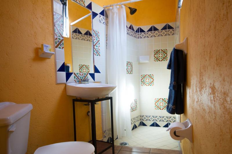 Fully Equipped Bathroom - ONE PERSON HIDEAWAY/ - Guanajuato - rentals