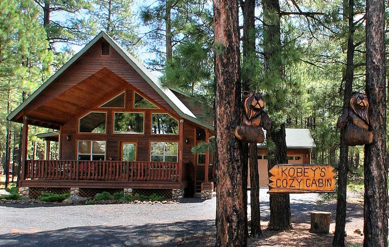 COMFY COZY MOUNTAIN CABIN - RELAX IN THE PINES! - Image 1 - Pinetop - rentals