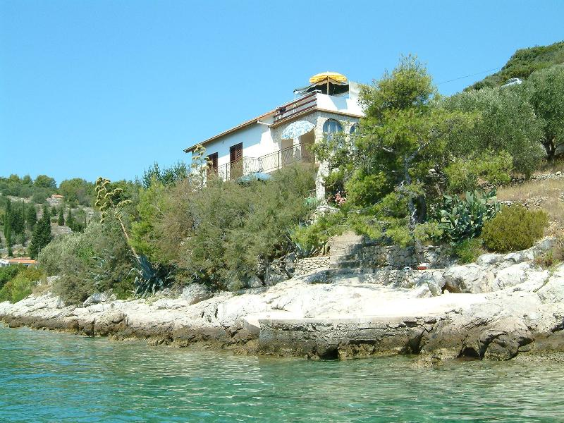 House - sea view - Apartment in a beach house, Vela Luka, Korčula - Vela Luka - rentals