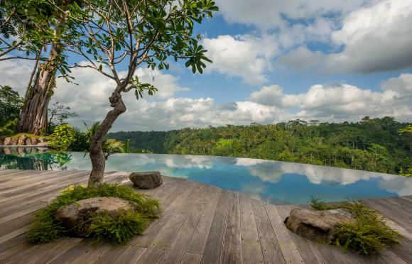 Hartland Estate Infinity Pool - Villa Hartland Estate Ubud Bali 5 bedroom River Retreat - Ubud - rentals