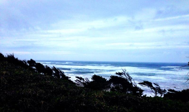 Pet-friendly oceanside studio 1/2 mile from beach! - Image 1 - Newport - rentals