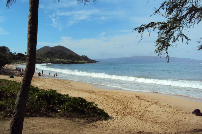 Maluaka Beach south access, walk to in 1 to 2 minutes! - See/HEAR ocean Experience Old Hawaii Furnishd Home - Wailea - rentals